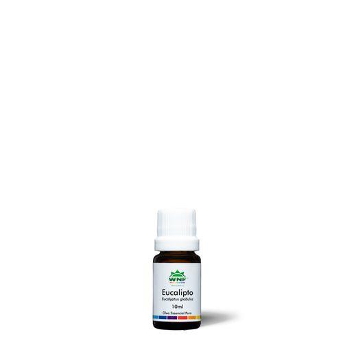 oleoessencial-eucalipto