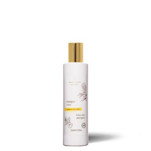 shampoo_controle_de_oleosidade